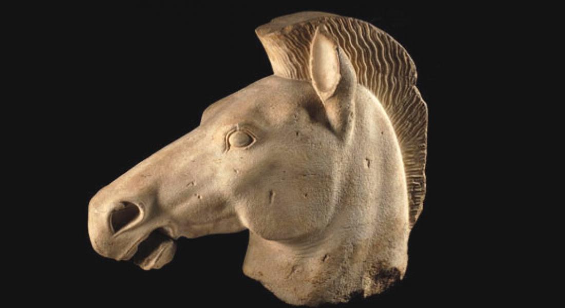 Tête de Cheval, Antiquités Grecques
