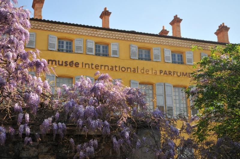 Mus e international de la parfumerie amis du louvre paris - Jardin du musee international de la parfumerie ...
