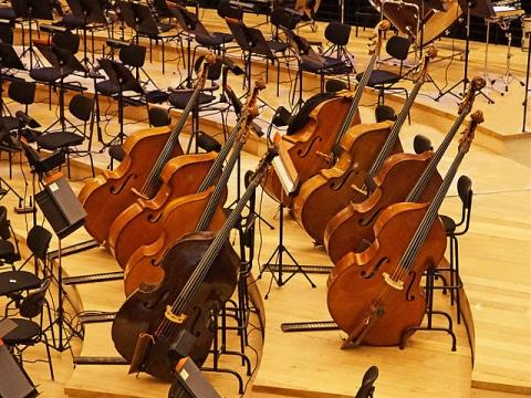 Les contrebasses, grande salle de la Philharmonie de Paris